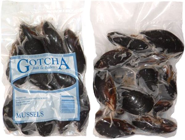 Mussels 500g Pack