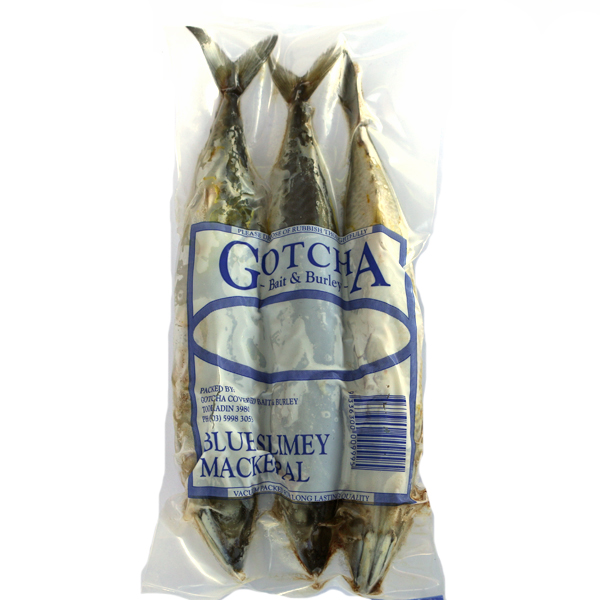 Mackerel Blue Slimey 3 Pack